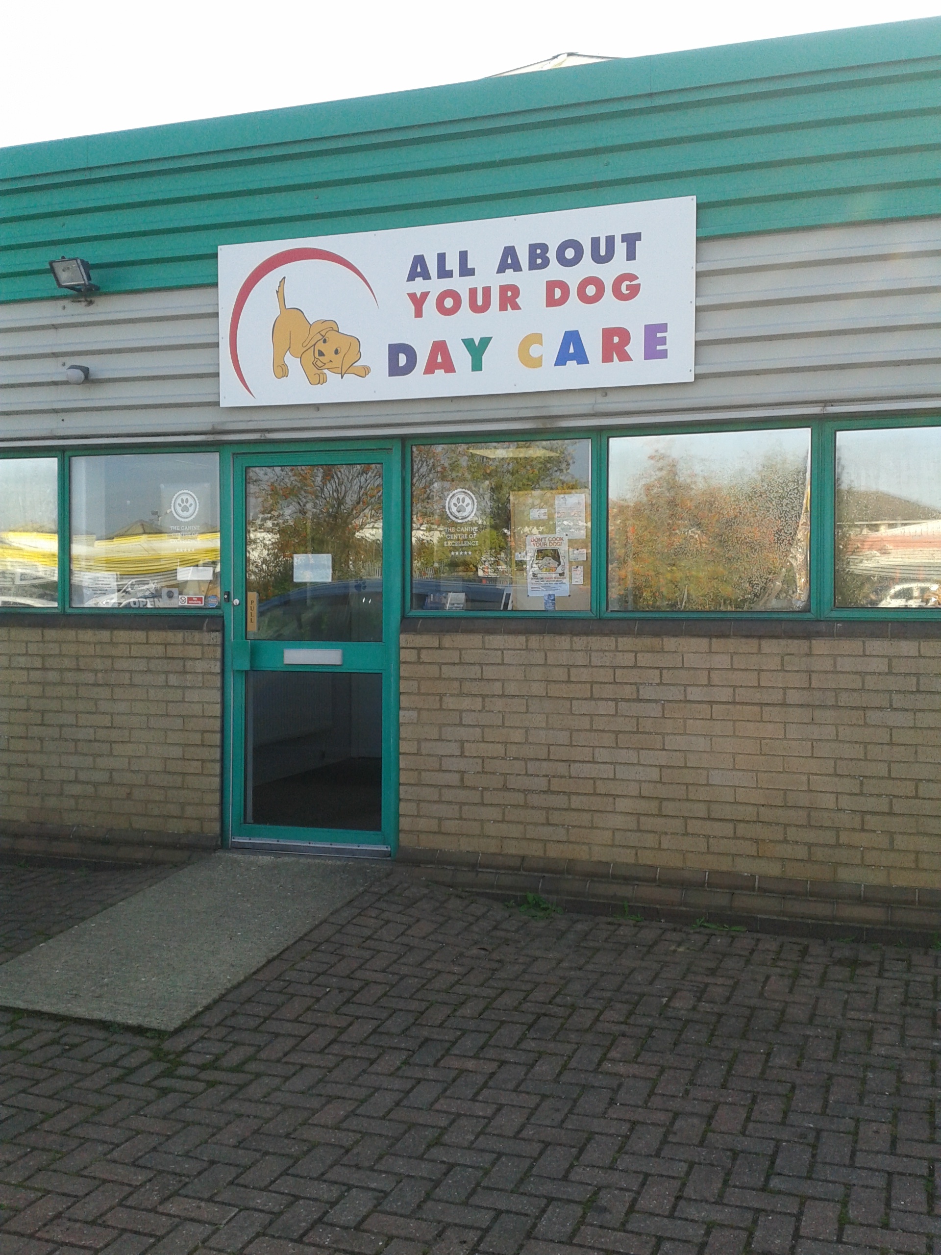 All About Your Dog Day Care Professional Dog Day Care For Peterborough